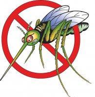 Анти-насекомые