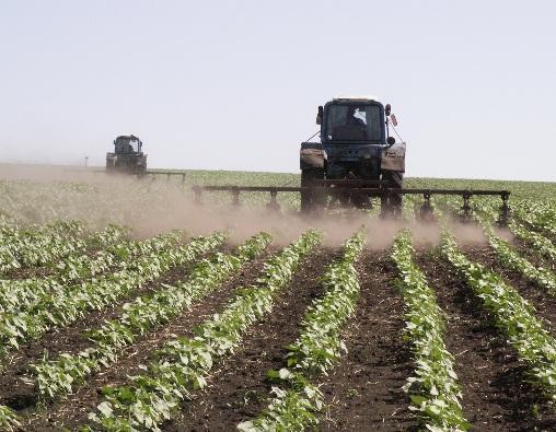 Сельское хозяйство Белгородской области